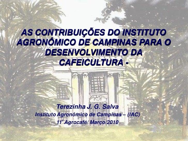 AS CONTRIBUIÇÕES DO INSTITUTO AGRONÔMICO DE CAMPINAS PARA O       DESENVOLVIMENTO DA         CAFEICULTURA -               ...