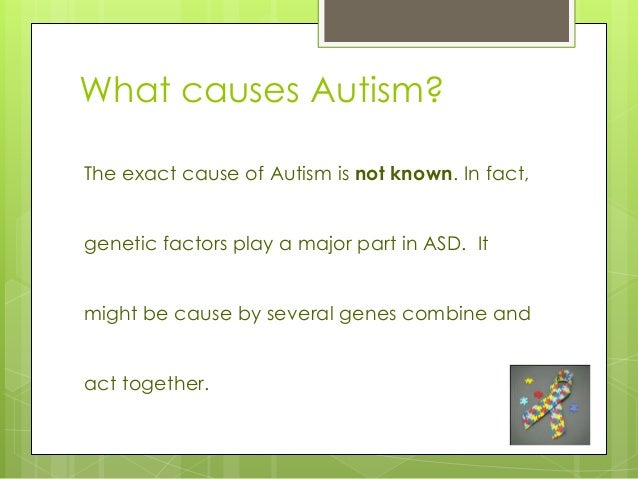 the causes of autism The causes of autism are still unknown and many theories have been disproven learn about the ongoing research into genetics, brain structure, and more the causes of autism are still unknown and many theories have been disproven learn about the ongoing research into genetics, brain structure, and more.