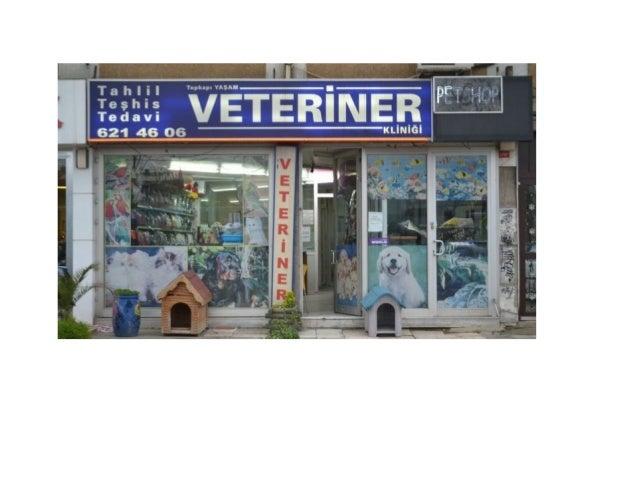 şehremini acil veteriner 0543 6678123 nöbetçi veteriner  acil veteriner   7/24 veteriner