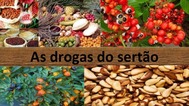 As drogas do sertão