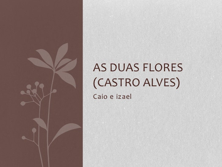 Caio e izael<br /> <br />As duas flores (castro alves)<br />