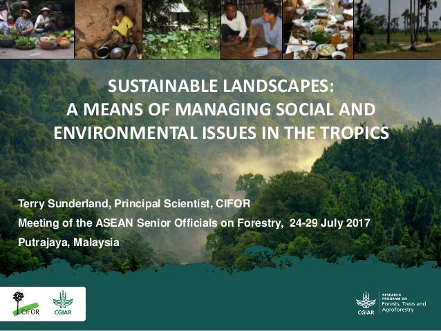 Terry Sunderland, Principal Scientist, CIFOR Meeting of the ASEAN Senior Officials on Forestry, 24-29 July 2017 Putrajaya,...