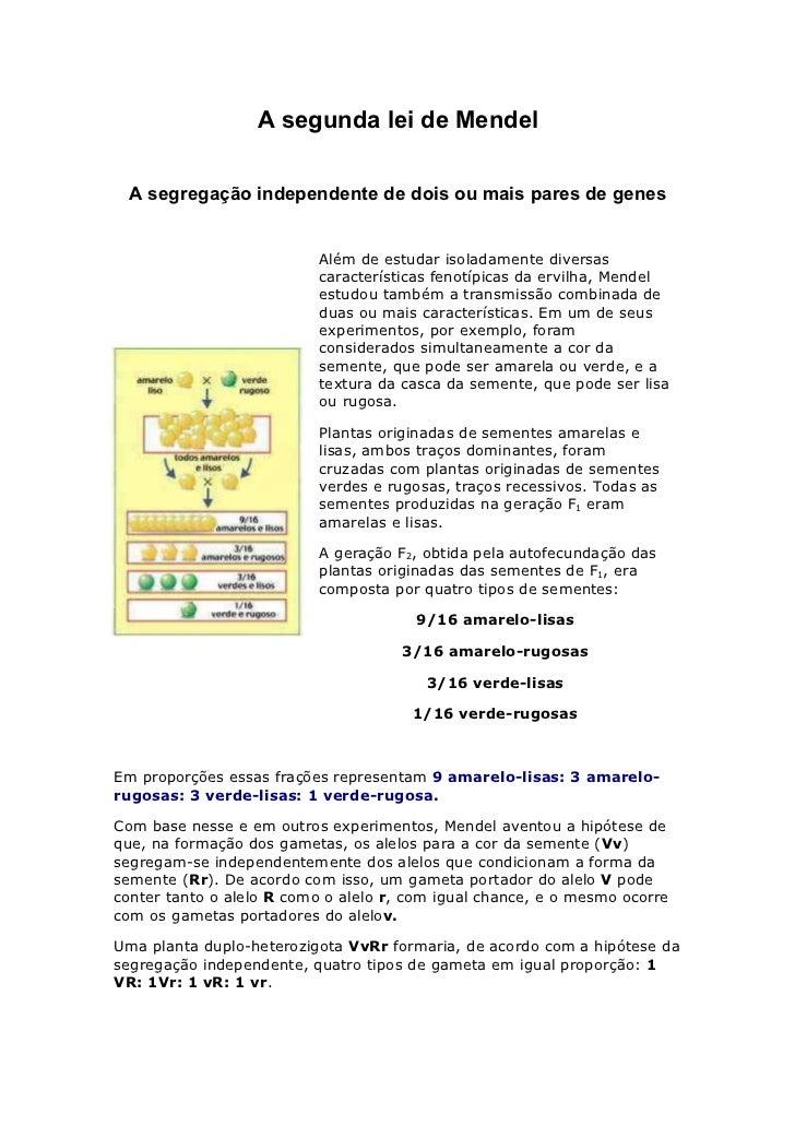 A segunda lei de Mendel  A segregação independente de dois ou mais pares de genes                          Além de estudar...