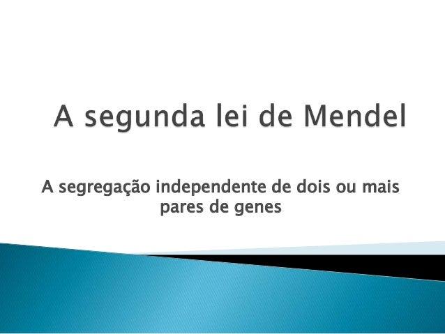 A segregação independente de dois ou mais  pares de genes