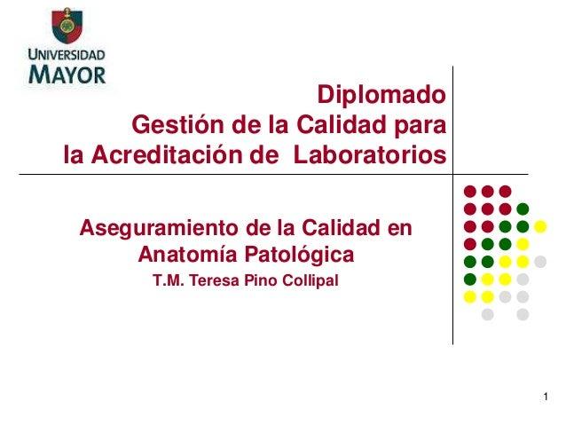 Diplomado Gestión de la Calidad para la Acreditación de Laboratorios Aseguramiento de la Calidad en Anatomía Patológica T....