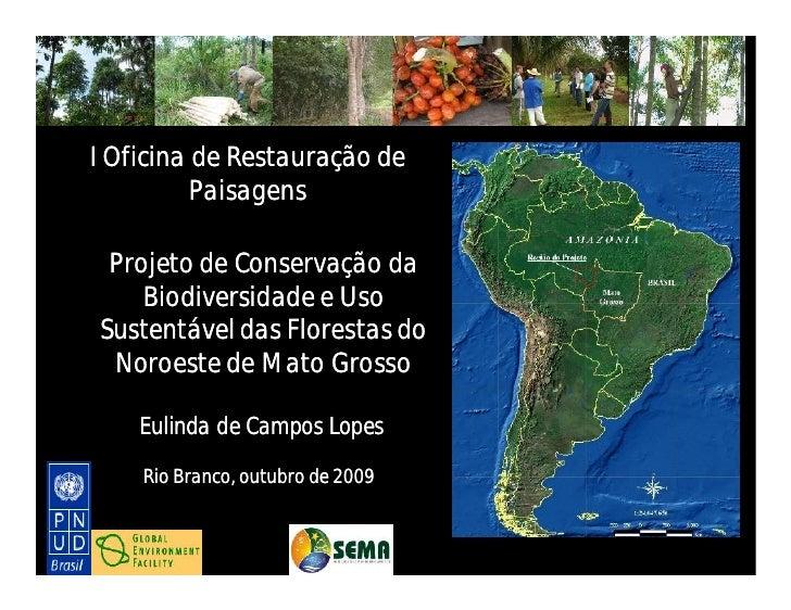 aa    I Oficina de Restauração de           Paisagens    Projeto de Conservação da      Biodiversidade e Uso  Sustentável ...