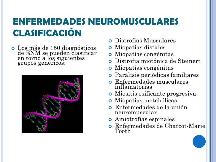 ENFERMEDADES NEUROMUSCULARESCLASIFICACIÓN                                     Distrofias Musculares   Los más de 150 dia...