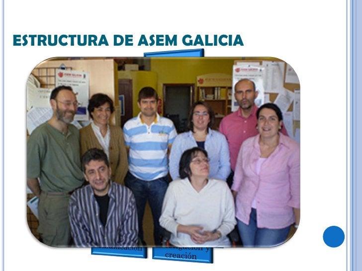 ESTRUCTURA DE ASEM GALICIA