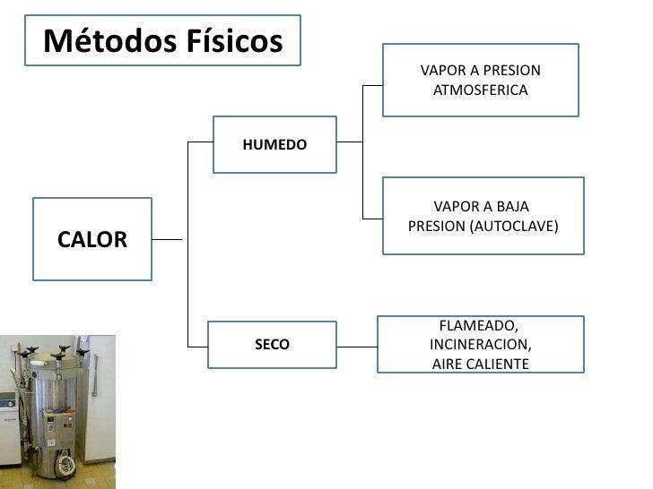 Métodos Físicos                      VAPOR A PRESION                       ATMOSFERICA            HUMEDO                  ...