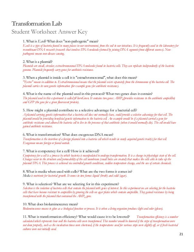 ap biology practice essay questions answers