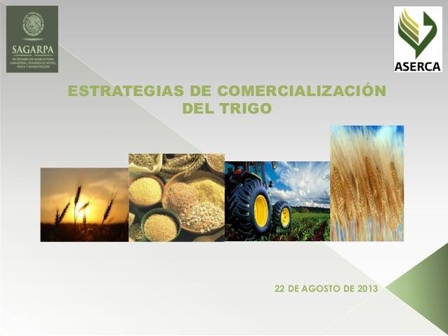 ESTRATEGIAS DE COMERCIALIZACIÓN DEL TRIGO 22 DE AGOSTO DE 2013