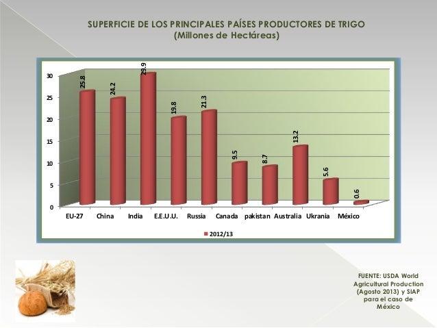 SUPERFICIE DE LOS PRINCIPALES PAÍSES PRODUCTORES DE TRIGO (Millones de Hectáreas) FUENTE: USDA World Agricultural Producti...