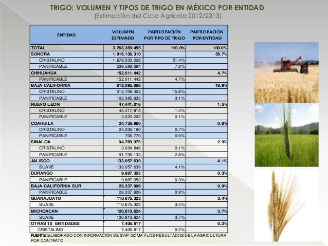 TRIGO: VOLUMEN Y TIPOS DE TRIGO EN MÉXICO POR ENTIDAD (Estimación del Ciclo Agrícola 2012/2013) ENTIDAD VOLUMEN ESTIMADO P...