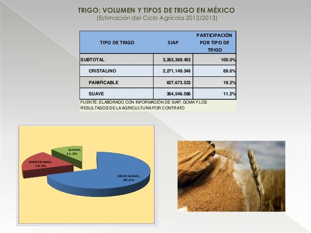 TRIGO: VOLUMEN Y TIPOS DE TRIGO EN MÉXICO (Estimación del Ciclo Agrícola 2012/2013) CRISTALINO, 69.6% PANIFICABLE, 19.2% S...