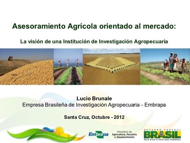 Asesoramiento Agrícola orientado al mercado:  La visión de una Institución de Investigación Agropecuaria                  ...