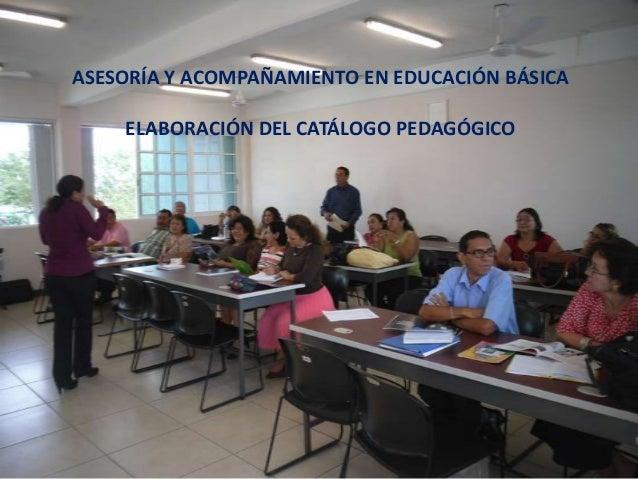 ASESORÍA Y ACOMPAÑAMIENTO EN EDUCACIÓN BÁSICA    ELABORACIÓN DEL CATÁLOGO PEDAGÓGICO