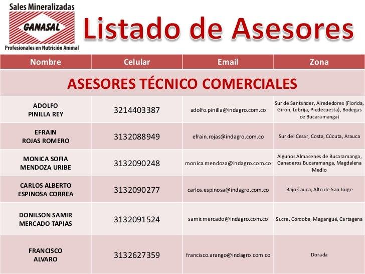 Listado de Asesores<br />