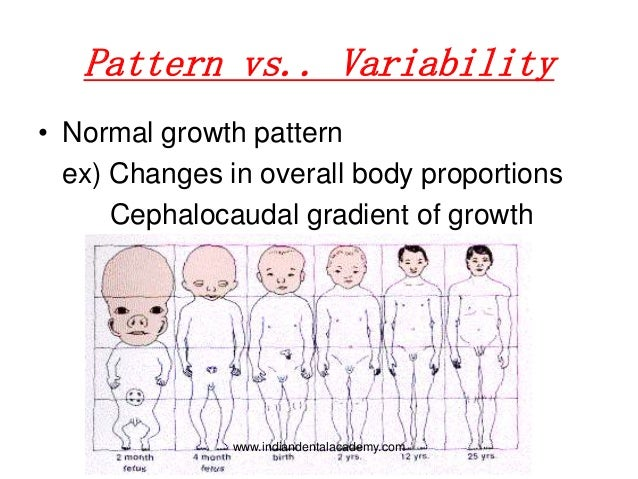 patterns of growth and development
