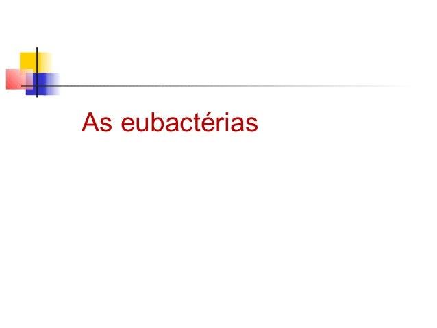 As eubactérias
