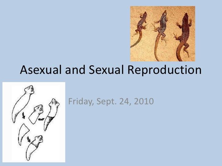 Asexual and Sexual Reproduction<br />Friday, Sept. 24, 2010<br />