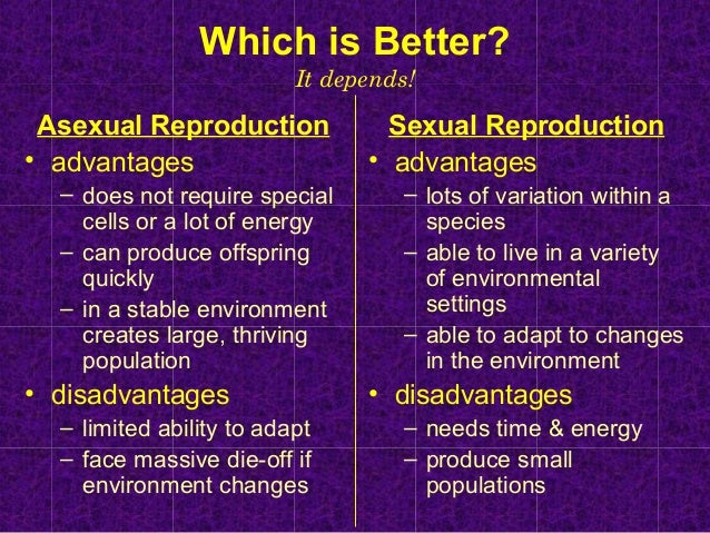 Is asexual reproduction better