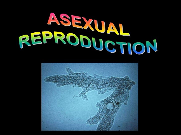 Four main methods of asexual       reproduction are:1. BINARY FISSION e.g. Amoeba