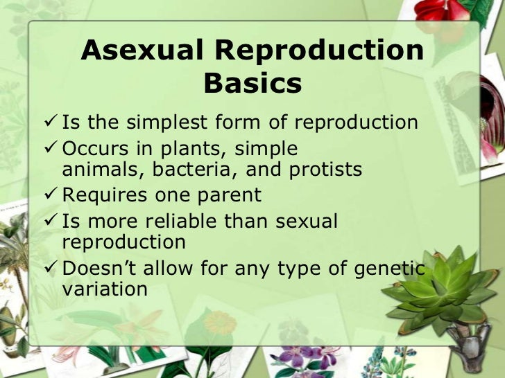 Asexual and sexual reproduction in plants ppt template