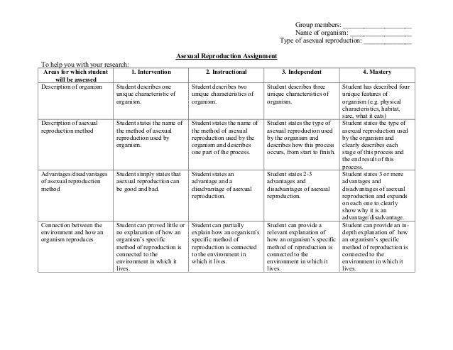 Building an organism essay