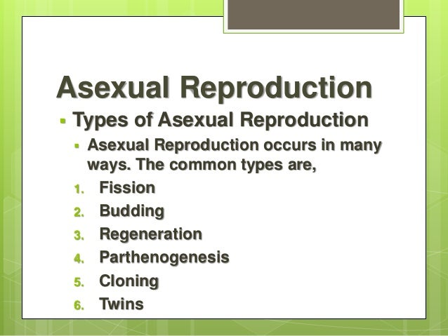Asexual reproduction budding ppt file