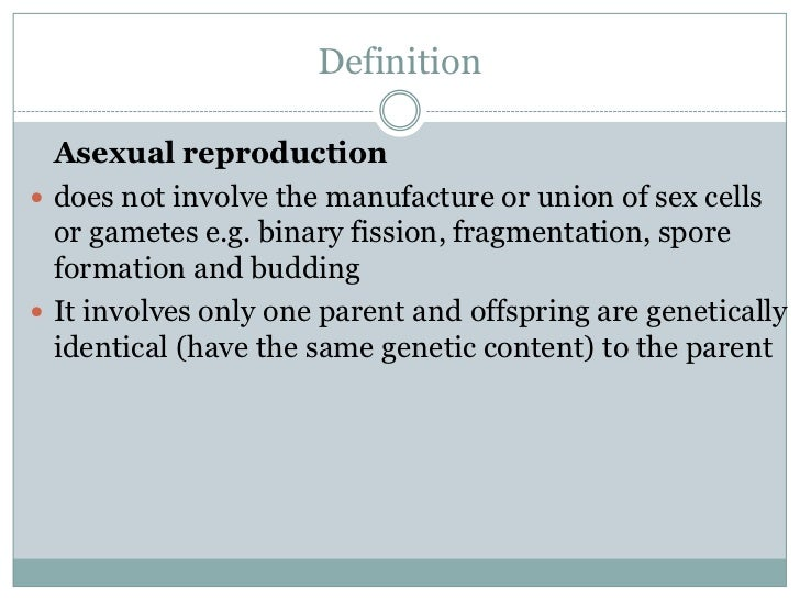 Define spore asexual reproduction definition