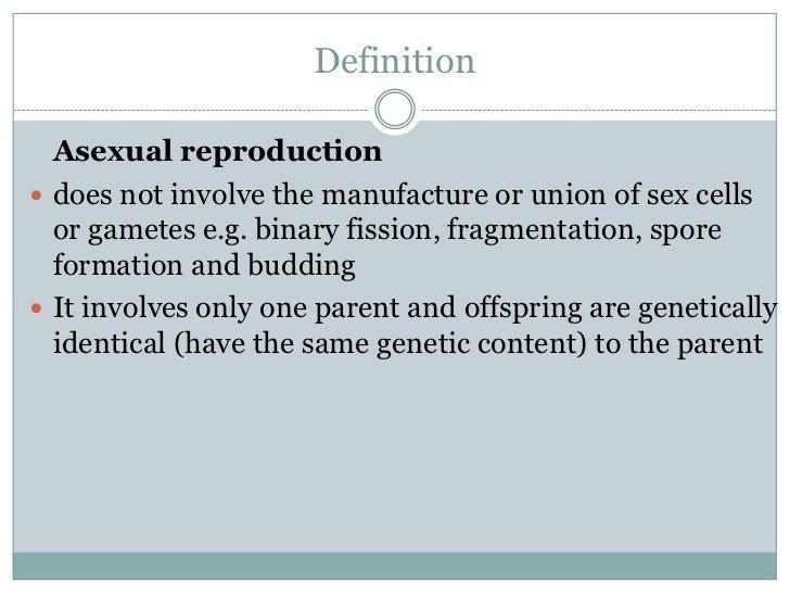Define spore asexual reproduction