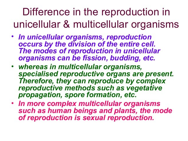 Asexual reproduction through budding takes place in cells