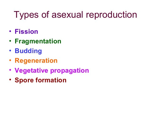 Modes of asexual reproduction
