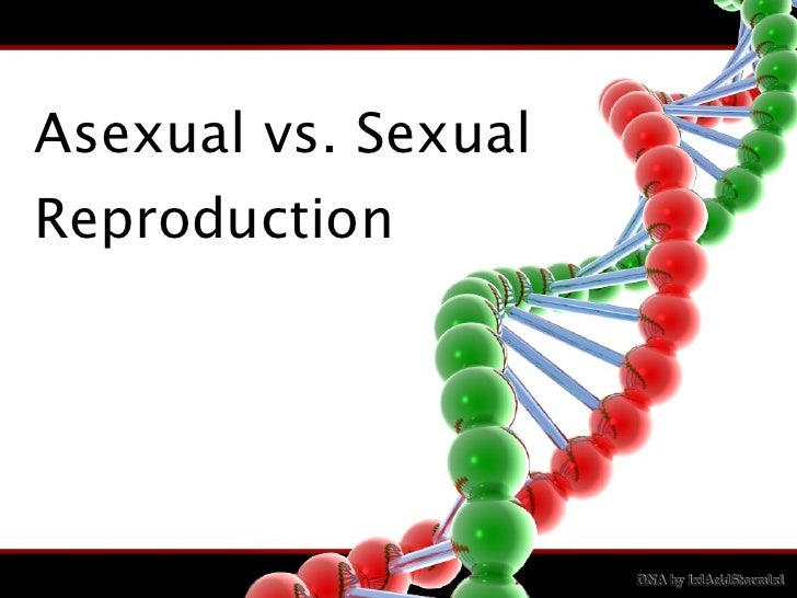 Sexual versus asexual reproduction ppt