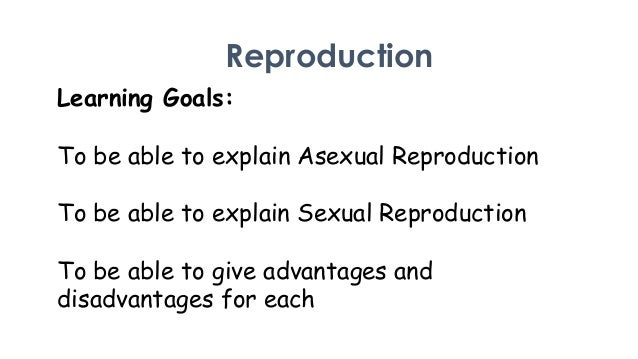 Advantages of bacteria reproducing asexually