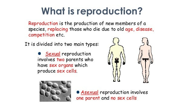 Asexual and sexual reproduction in humans