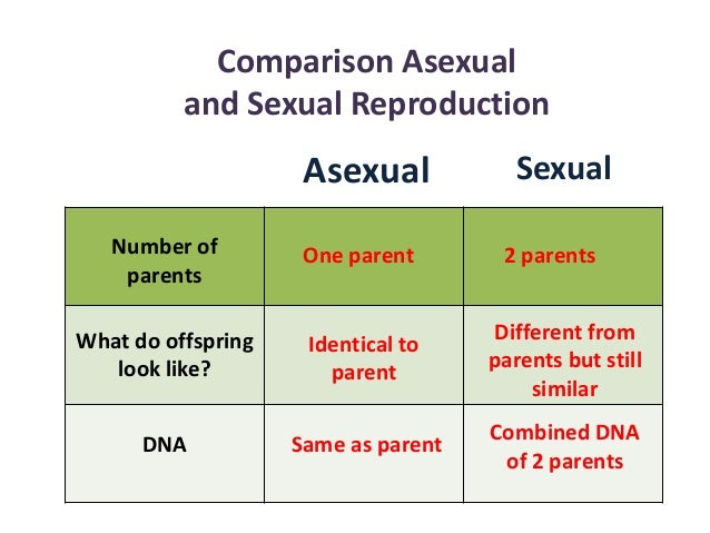 Asexual and sexual reproduction comparison table