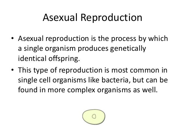 Asexual reproduction meanings