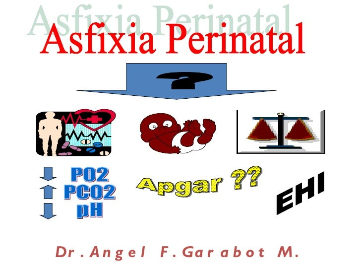Dr . A n g e l F . Ga r a b o t M .