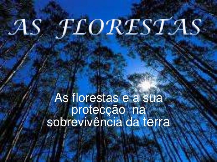 As florestas e a sua    protecção nasobrevivência da terra