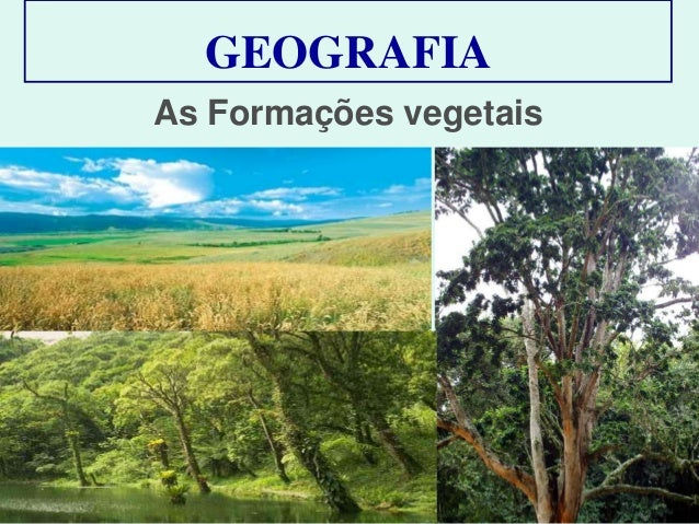 GEOGRAFIA As Formações vegetais