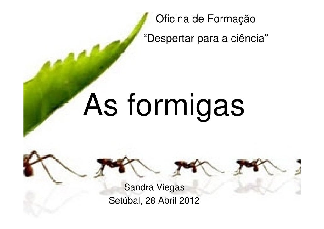 """Oficina de Formação         """"Despertar para a ciência""""As formigas    Sandra Viegas Setúbal, 28 Abril 2012"""