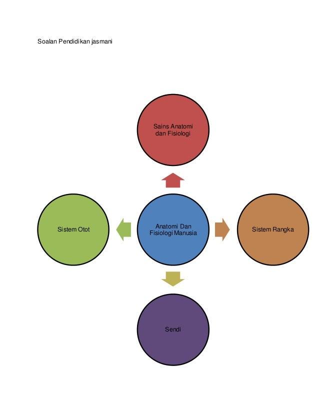 Soalan Pendidikan jasmani Anatomi Dan Fisiologi Manusia Sains Anatomi dan Fisiologi Sistem Rangka Sendi Sistem Otot
