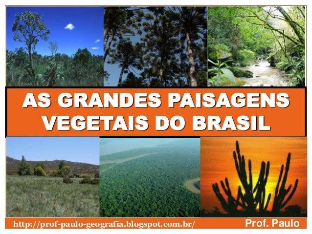 AS GRANDES PAISAGENSVEGETAIS DO BRASILProf. Paulohttp://prof-paulo-geografia.blogspot.com.br/
