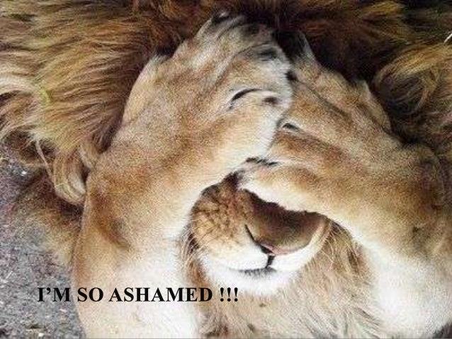 I'm So Ashamed! - Cutest Paw