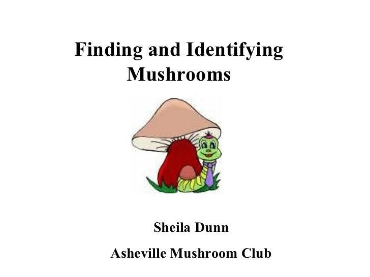 Finding and Identifying     Mushrooms         Sheila Dunn   Asheville Mushroom Club