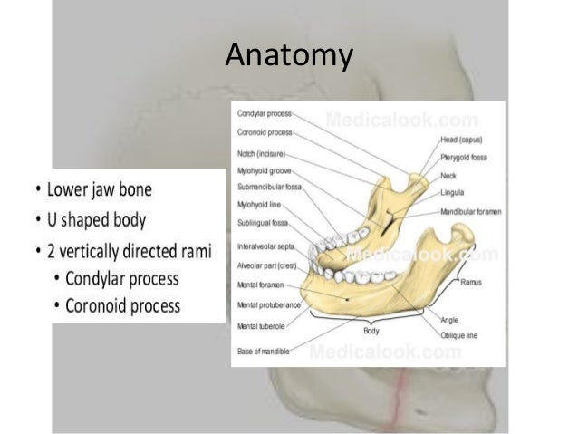 Recent Advancement In Management Of Madibular Fractures