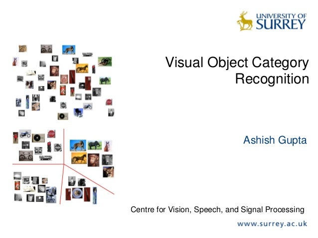 Visual Object CategoryRecognitionAshish GuptaCentre for Vision, Speech, and Signal Processing