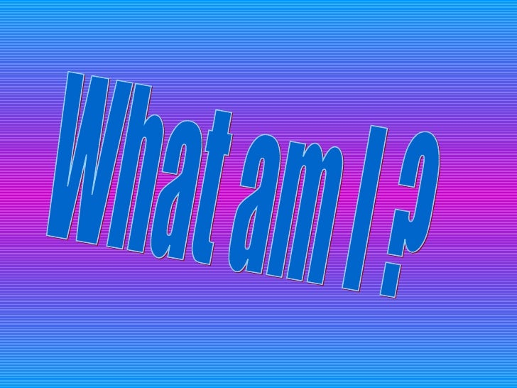 What am I ?