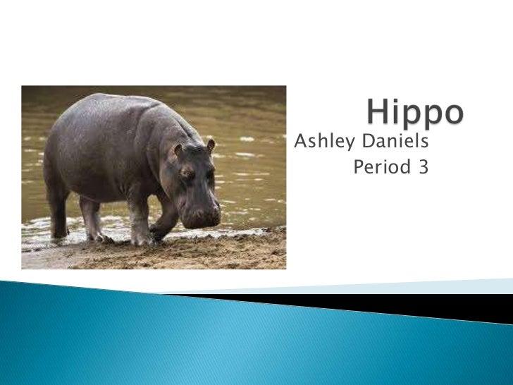 Ashley Daniels      Period 3